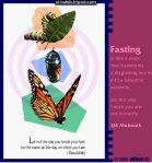 fitr_butterfly